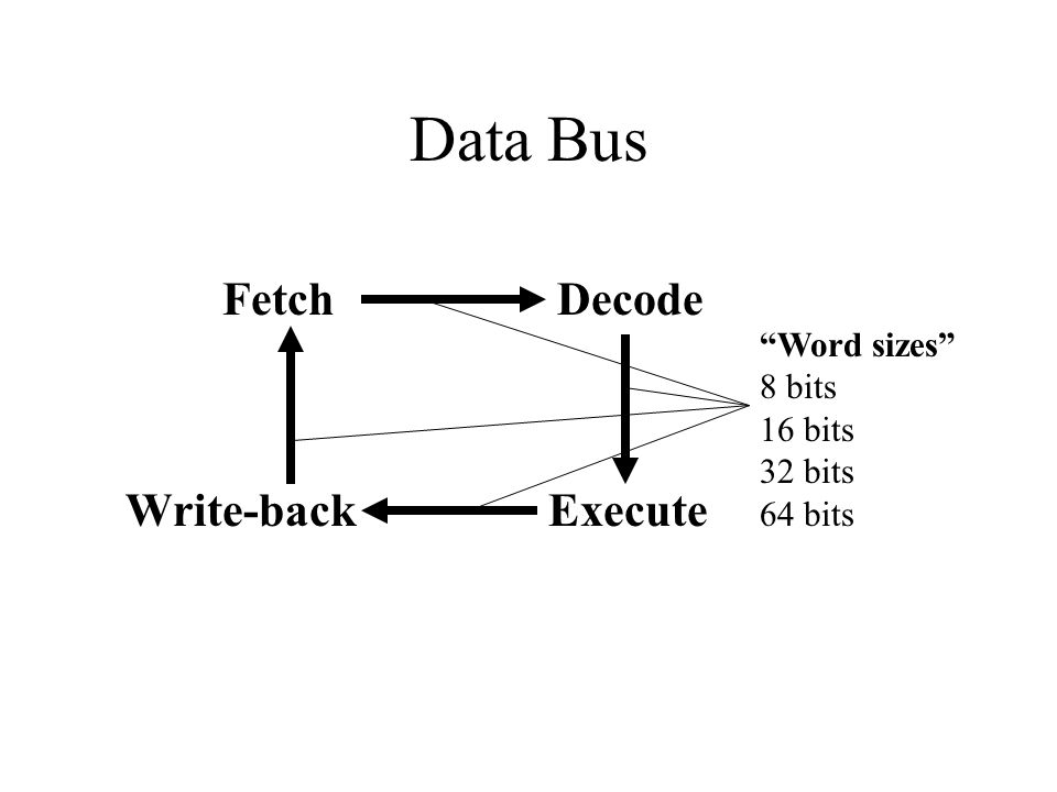 Data Bus FetchDecode ExecuteWrite-back Word sizes 8 bits 16 bits 32 bits 64 bits