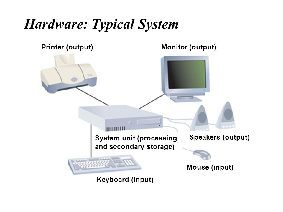 Hardware: Typical System Printer (output)Monitor (output) Speakers (output) Mouse (input) Keyboard (input) System unit (processing and secondary stora