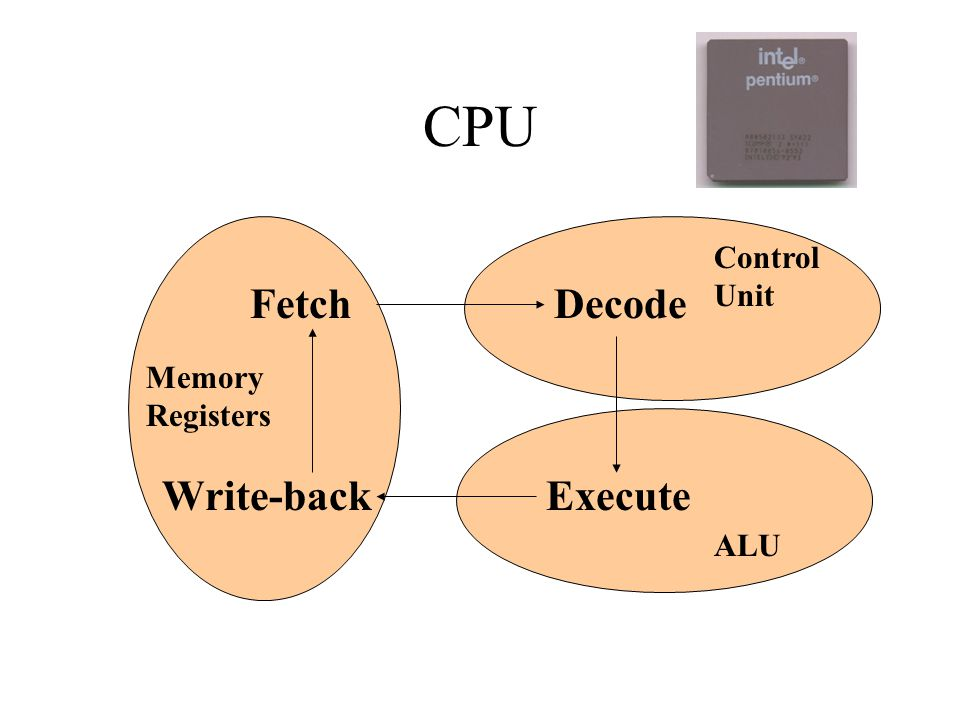 CPU Control Unit Maintains order Controls CPU activity Directs sequence of operations Arithmetic/logic Unit (ALU) Manipulates data Performs arithmetic computations Performs logical operations Registers Temporary storage areas for instructions or data offer the advantage of speed work under the direction of the control unit to accept, hold, and transfer instructions or data