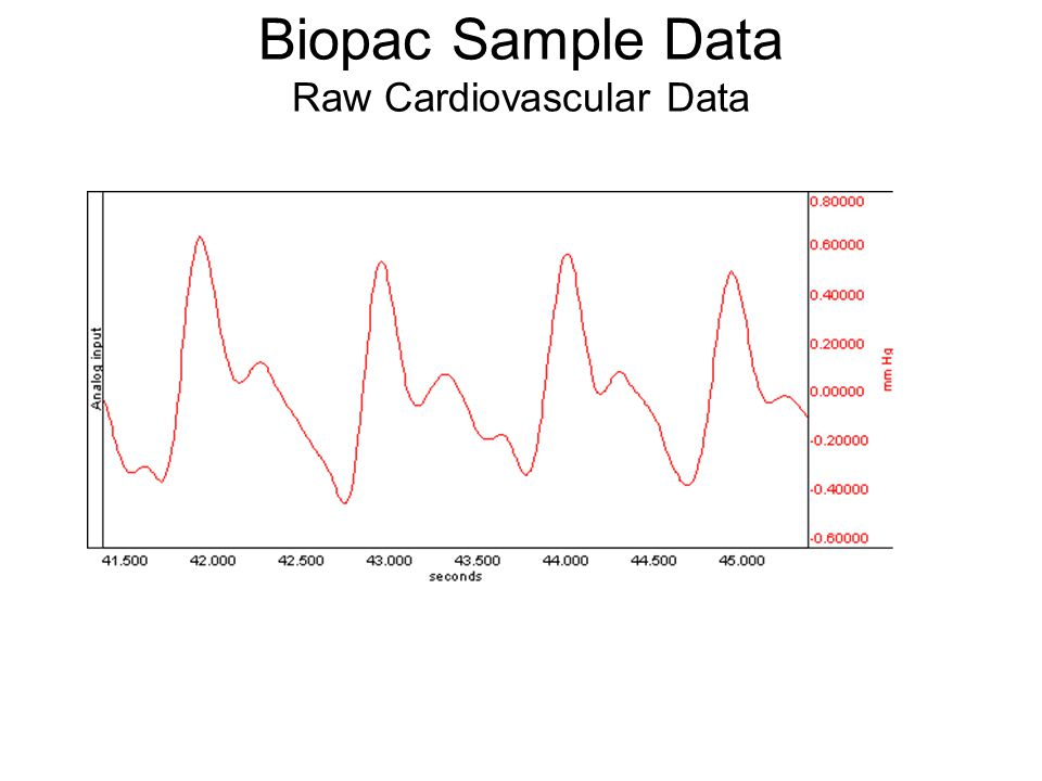 Biopac Sample Data Raw Cardiovascular Data