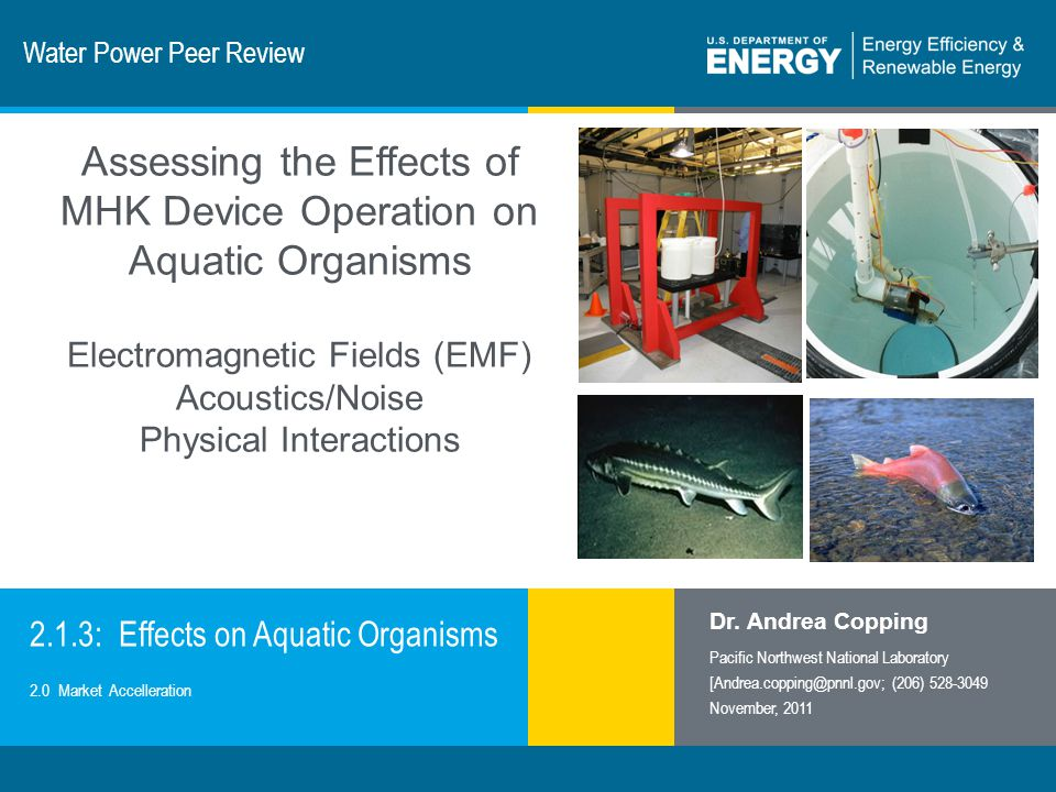 2 | Wind and Water Power Programeere.energy.gov Purpose, Objectives, & Integration There is limited information on the potential effects of EMF, acoustics/noise, or physical interaction on important marine, estuarine, and fresh water species.