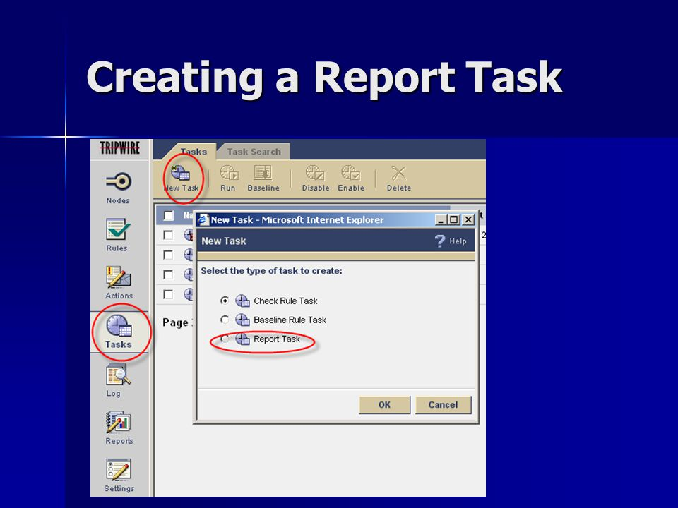 Creating a Report Task