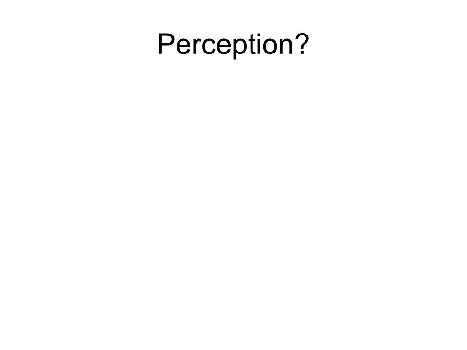Perception?