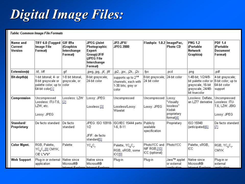 Digital Image Files: