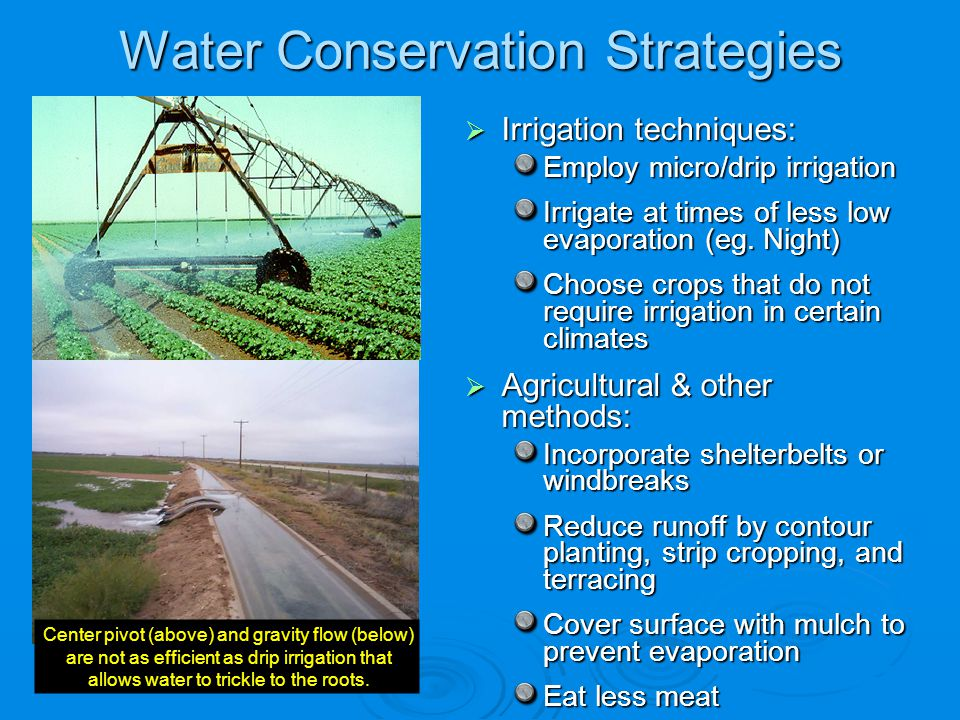 Water Conservation Strategies Irrigation techniques: Irrigation techniques: Employ micro/drip irrigation Irrigate at times of less low evaporation (eg