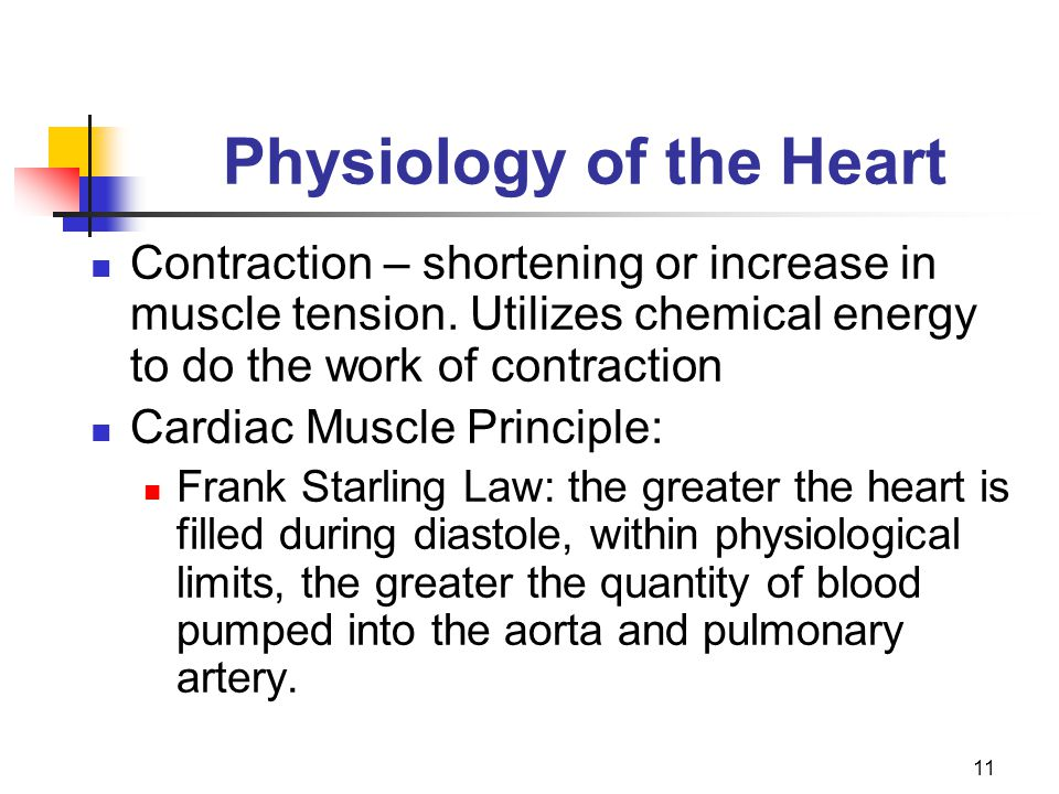 11 Physiology of the Heart Contraction – shortening or increase in muscle tension. Utilizes chemical energy to do the work of contraction Cardiac Musc