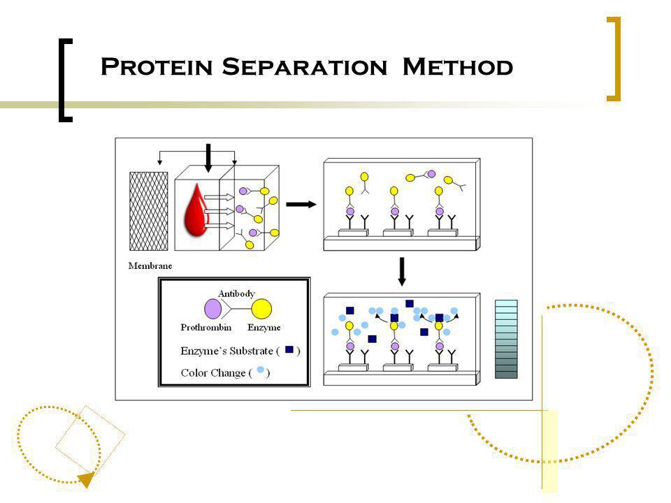 Protein Separation Method