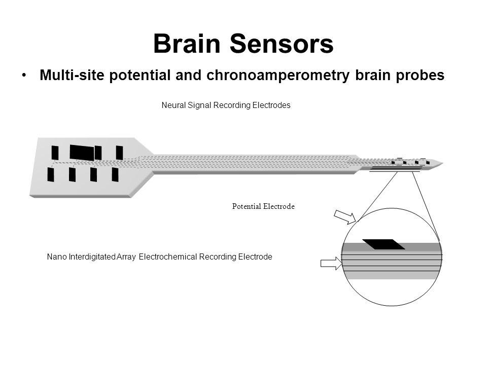 Multi-site potential and chronoamperometry brain probes Brain Sensors Neural Signal Recording Electrodes Nano Interdigitated Array Electrochemical Rec