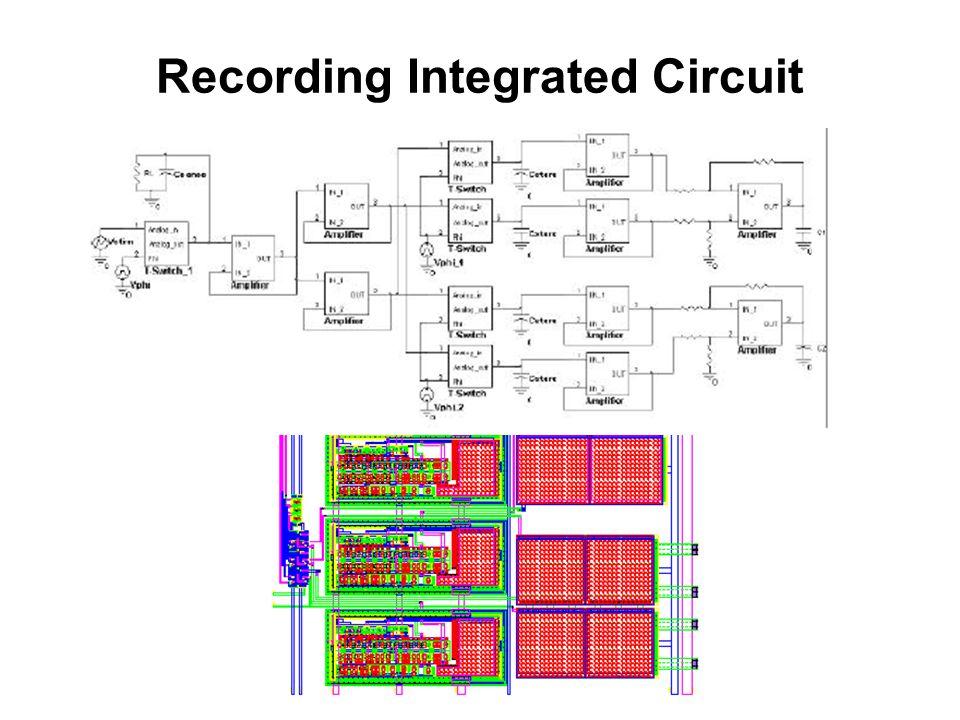 Recording Integrated Circuit