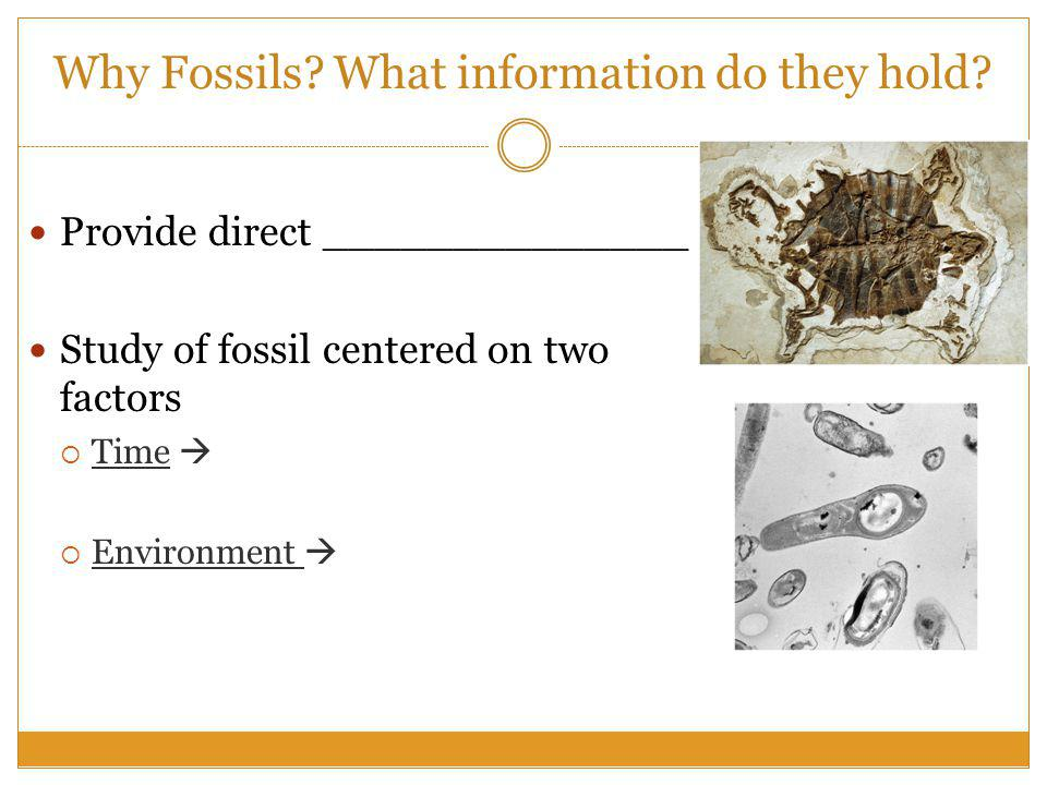 Why Fossils.What information do they hold.