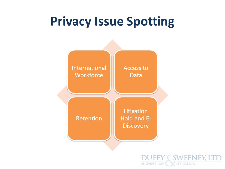 Privacy Issue Spotting International Workforce Access to Data Retention Litigation Hold and E- Discovery