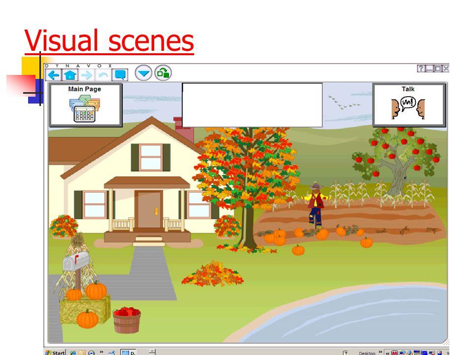 Visual scenes