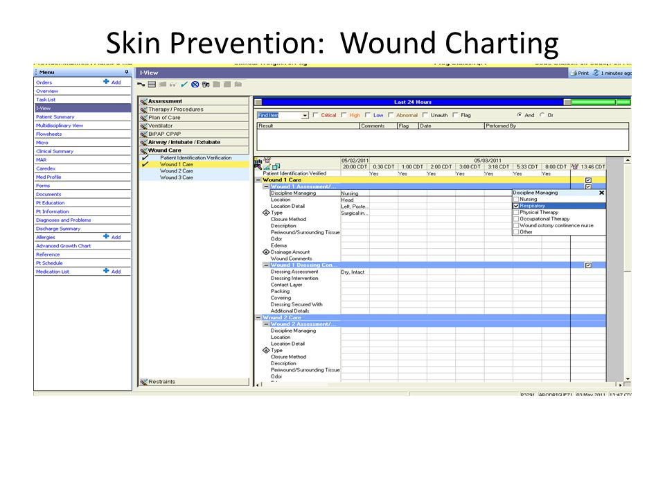 Skin Prevention: Wound Charting