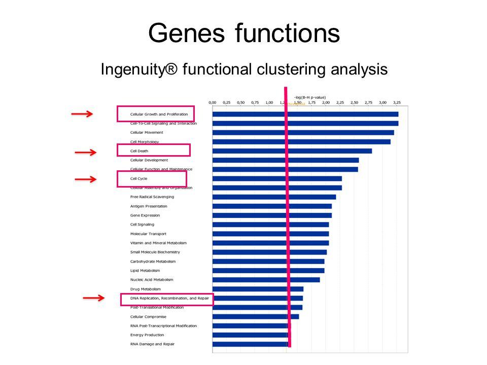 Genes functions Ingenuity® functional clustering analysis