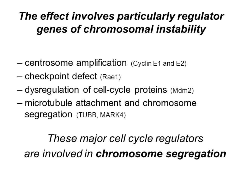 The effect involves particularly regulator genes of chromosomal instability –centrosome amplification (Cyclin E1 and E2) –checkpoint defect (Rae1) –dysregulation of cell-cycle proteins (Mdm2) –microtubule attachment and chromosome segregation (TUBB, MARK4) These major cell cycle regulators are involved in chromosome segregation