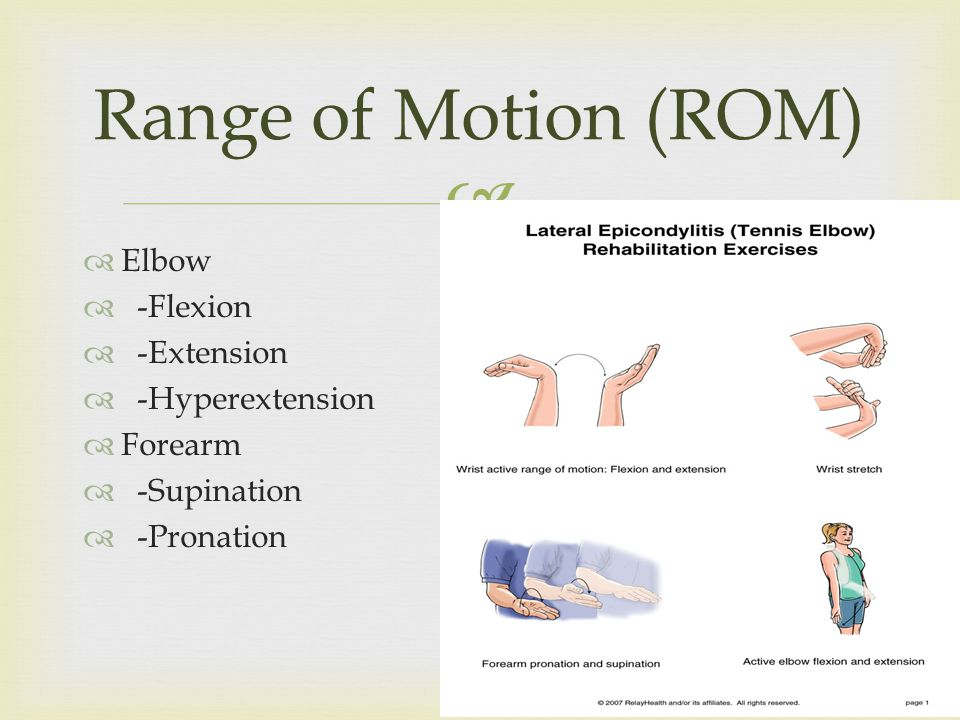 Elbow -Flexion -Extension -Hyperextension Forearm -Supination -Pronation Range of Motion (ROM)