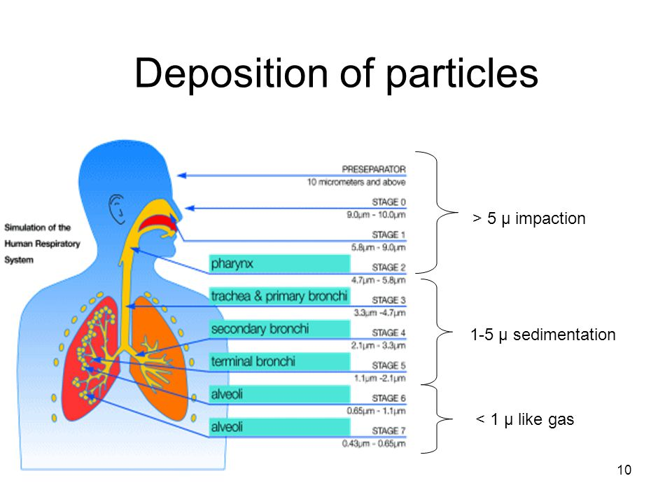 10 Deposition of particles > 5 µ impaction 1-5 µ sedimentation < 1 µ like gas