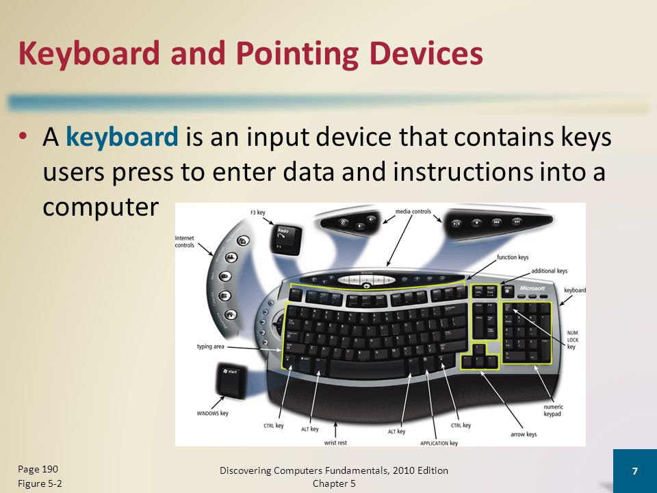 Other Types of Input Discovering Computers Fundamentals, 2010 Edition Chapter 5 18 Page 196 Figure 5-13