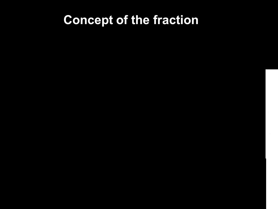 Concept of the fraction