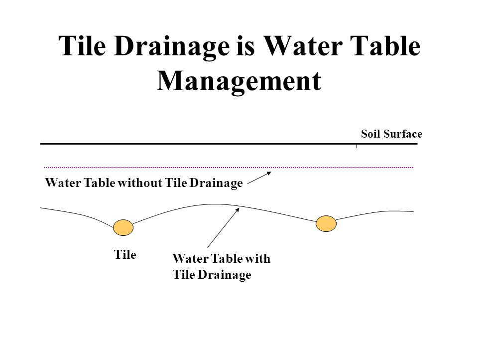 Tile Drainage is Water Table Management Soil Surface Tile Water Table with Tile Drainage Water Table without Tile Drainage