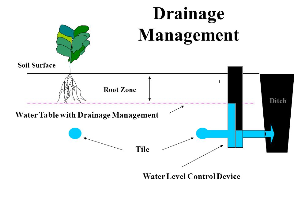 Drainage Management (Parallel System and Flat Topography) Field Boundary main laterals Water level control structure