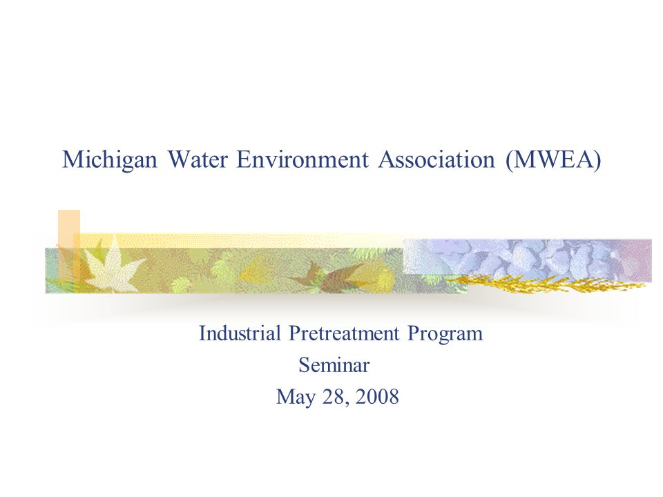 Michigan Water Environment Association (MWEA) Industrial Pretreatment Program Seminar May 28, 2008