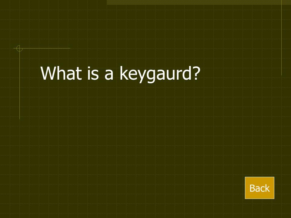 What is a keygaurd? Back