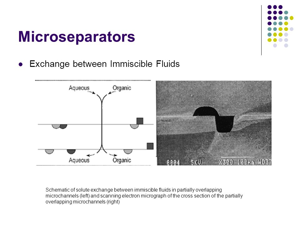 Microseparators Exchange between Immiscible Fluids Schematic of solute exchange between immiscible fluids in partially overlapping microchannels (left) and scanning electron micrograph of the cross section of the partially overlapping microchannels (right)