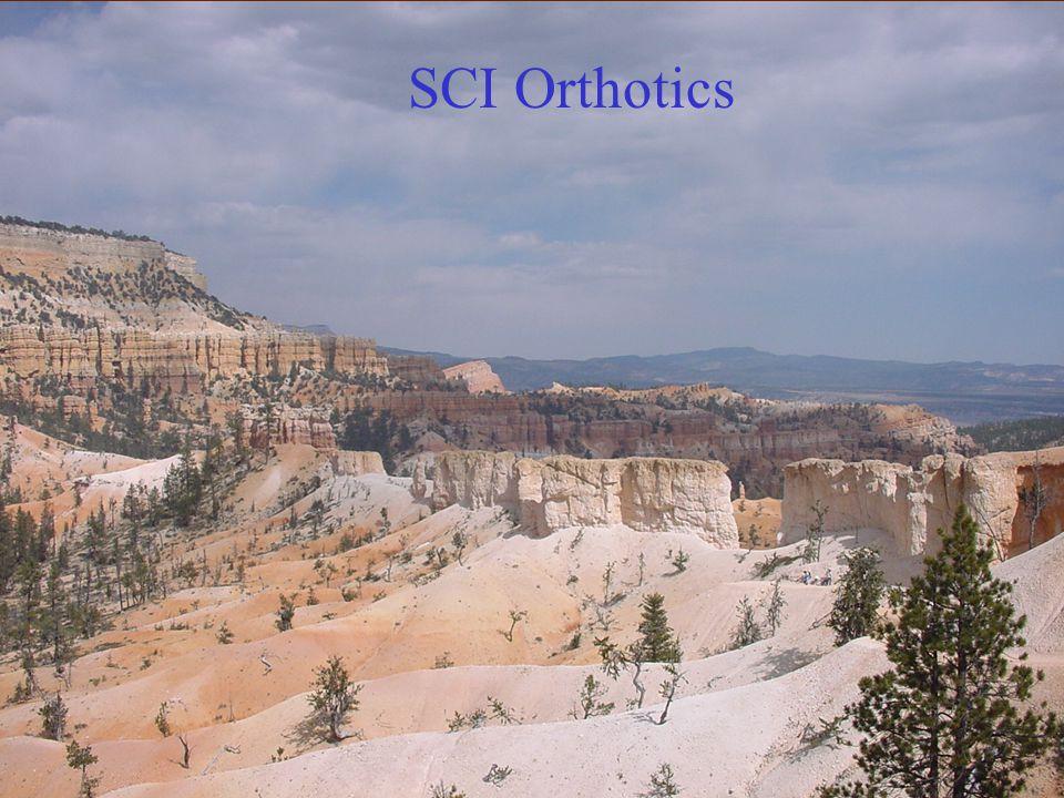 SCI Orthotics