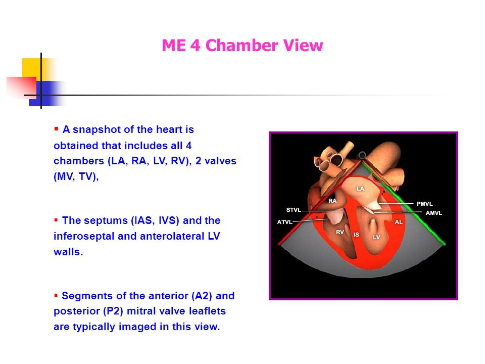 The ME 4C view (0°) is obtained by positioning the probe in the mid- esophagus behind the LA. The imaging plane is directed thru the LA, center of the