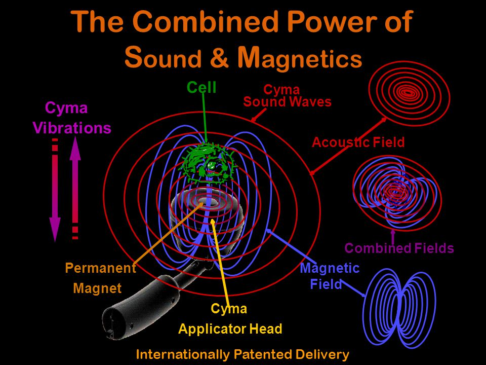 Cell Cyma Vibrations Permanent Magnet Cyma Sound Waves Magnetic Field Cyma Applicator Head Combined Fields Acoustic Field The Combined Power of S ound & M agnetics Internationally Patented Delivery