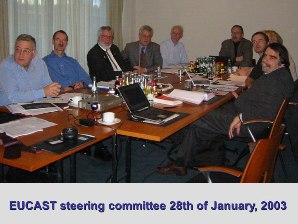 EUCAST steering committee 28th of January, 2003