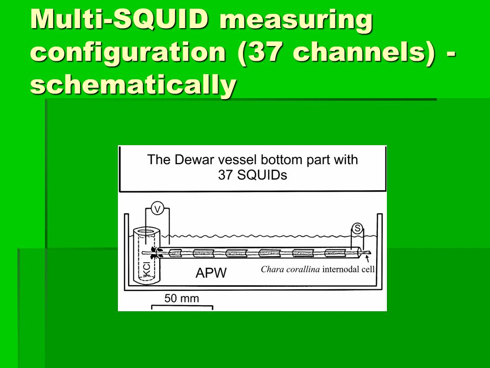 Multi-SQUID measuring configuration (37 channels) - schematically
