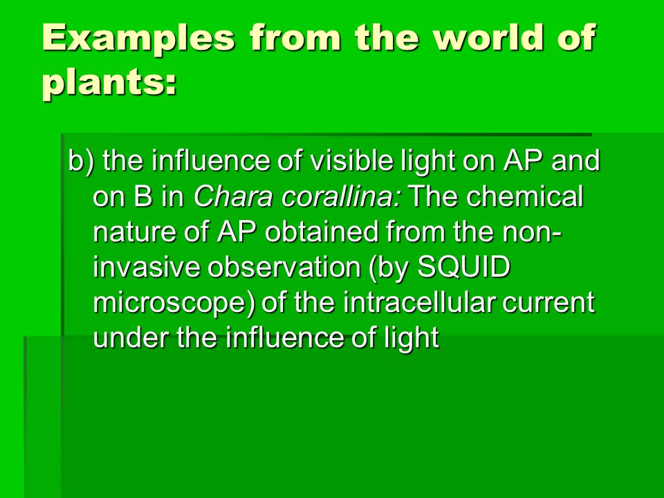 Examples from the world of plants: b) the influence of visible light on AP and on B in Chara corallina: The chemical nature of AP obtained from the non- invasive observation (by SQUID microscope) of the intracellular current under the influence of light