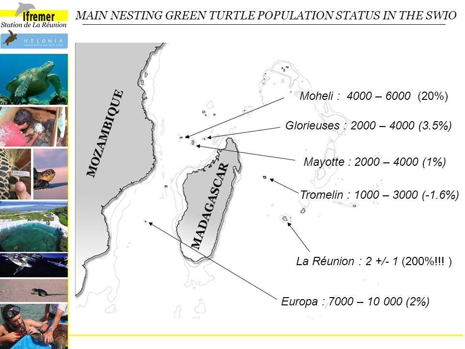 MAIN NESTING GREEN TURTLE POPULATION STATUS IN THE SWIO Moheli : 4000 – 6000 (20%) Glorieuses : 2000 – 4000 (3.5%) Tromelin : 1000 – 3000 (-1.6%) Mayotte : 2000 – 4000 (1%) La Réunion : 2 +/- 1 (200%!!.