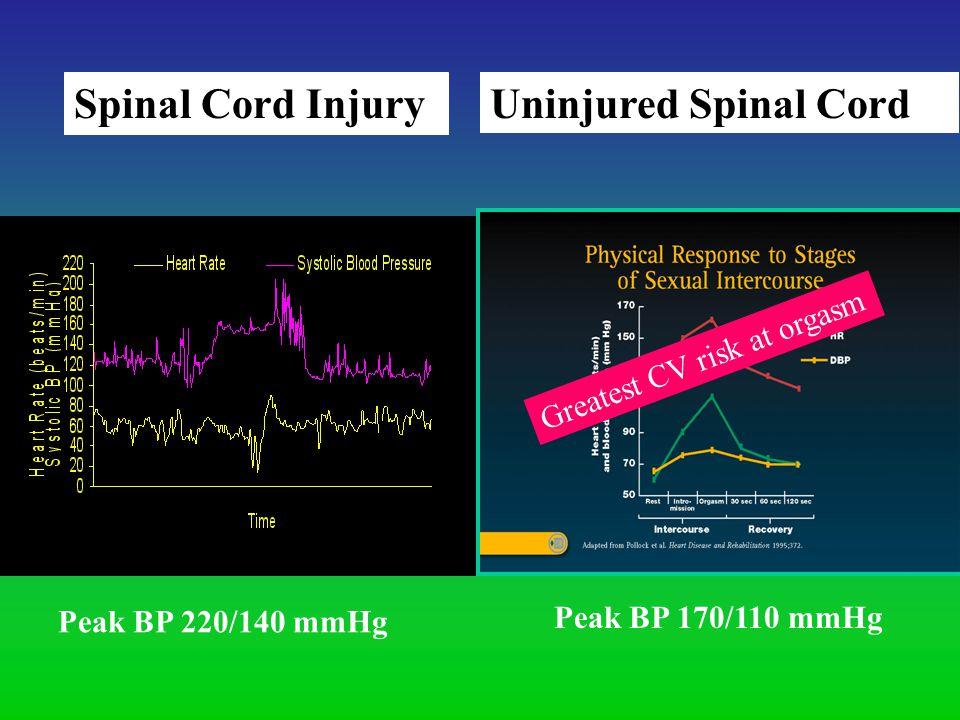 Spinal Cord Injury Uninjured Spinal Cord Peak BP 220/140 mmHg Peak BP 170/110 mmHg Greatest CV risk at orgasm