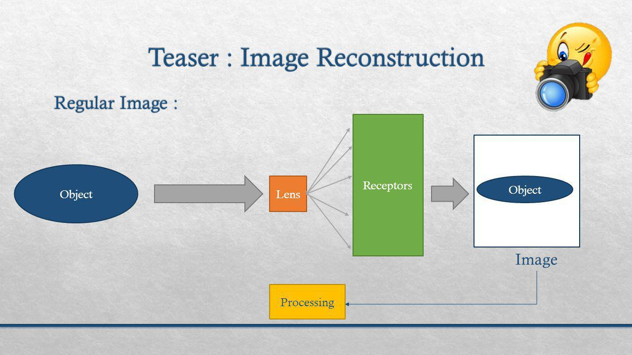 Object Lens Receptors Object Image Processing