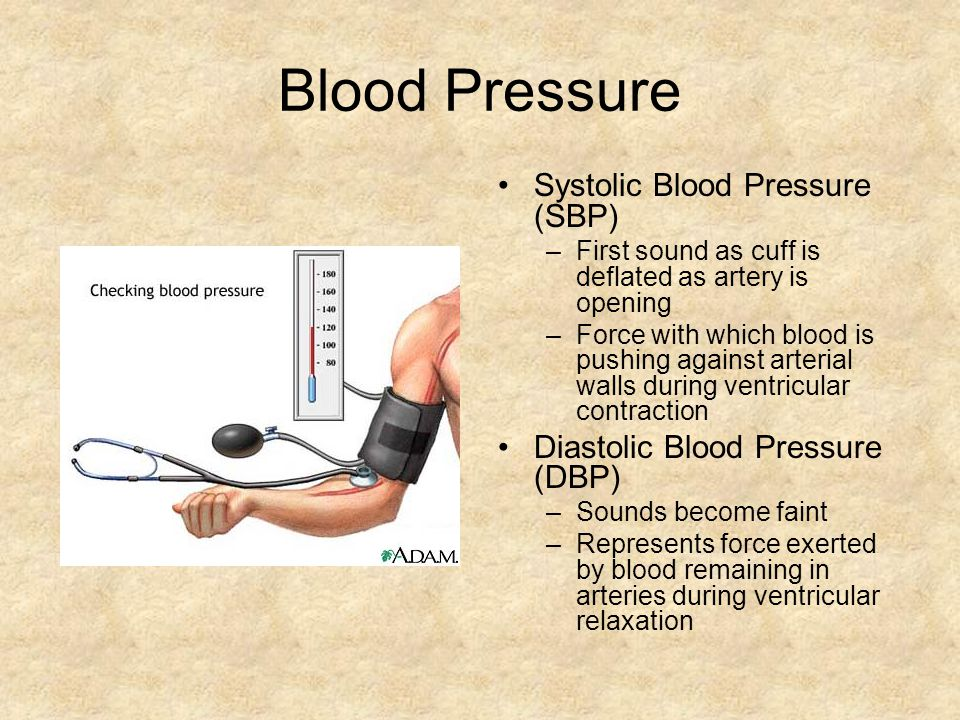 Blood Pressure Systolic Blood Pressure (SBP) –First sound as cuff is deflated as artery is opening –Force with which blood is pushing against arterial walls during ventricular contraction Diastolic Blood Pressure (DBP) –Sounds become faint –Represents force exerted by blood remaining in arteries during ventricular relaxation