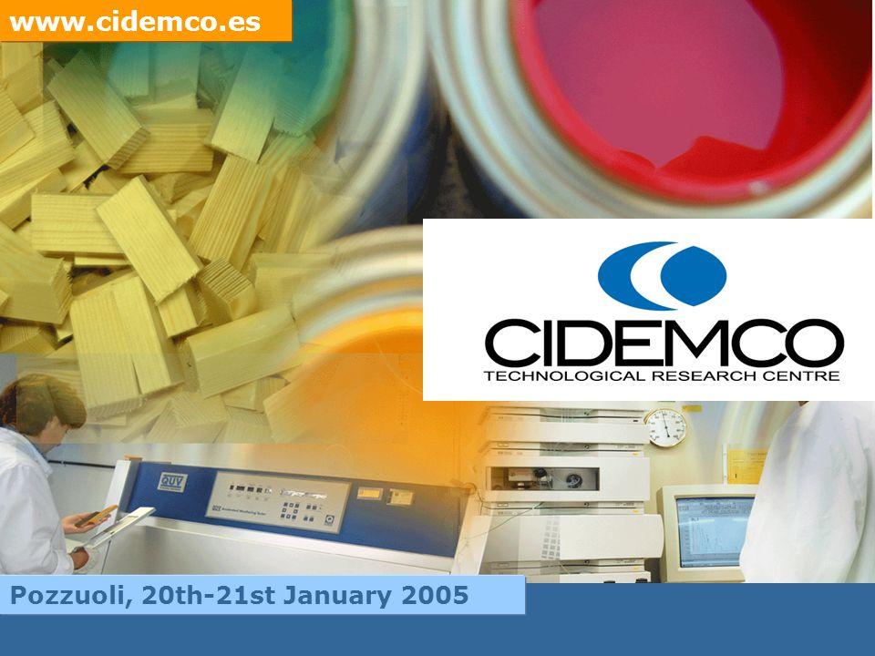 www.cidemco.es Pozzuoli, 20th-21st January 2005