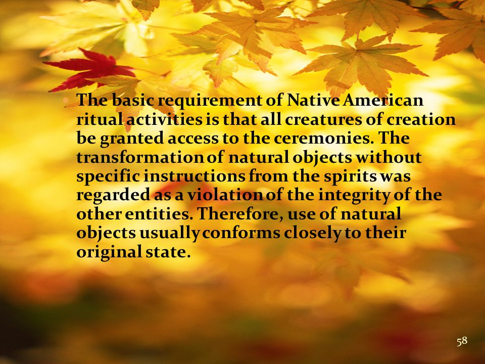 The basic requirement of Native American ritual activities is that all creatures of creation be granted access to the ceremonies.