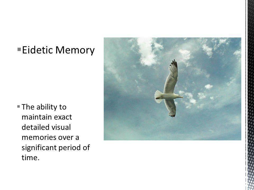 The ability to maintain exact detailed visual memories over a significant period of time. Eidetic Memory