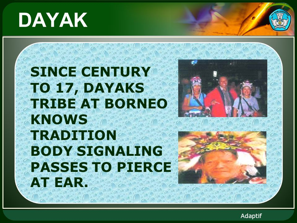Adaptif DAYAK SINCE CENTURY TO 17, DAYAKS TRIBE AT BORNEO KNOWS TRADITION BODY SIGNALING PASSES TO PIERCE AT EAR.