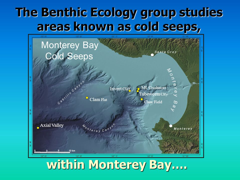 Places where energy-rich fluids are out of the ocean floor due to the geology of the underlying sediments or due to the physiological functioning of the subsurface microbial community.