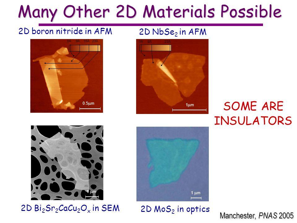 Many Other 2D Materials Possible 1 m 0Å 9Å 16Å 23Å 0.5 m 2D boron nitride in AFM 2D MoS 2 in optics 1 m 0Å 8Å 23Å 2D NbSe 2 in AFM 1 m 2D Bi 2 Sr 2 CaCu 2 O x in SEM SOME ARE INSULATORS Manchester, PNAS 2005