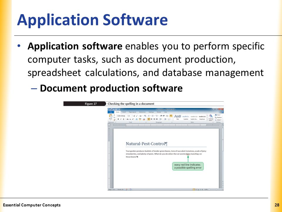 XP Application Software Application software enables you to perform specific computer tasks, such as document production, spreadsheet calculations, and database management – Document production software 28Essential Computer Concepts