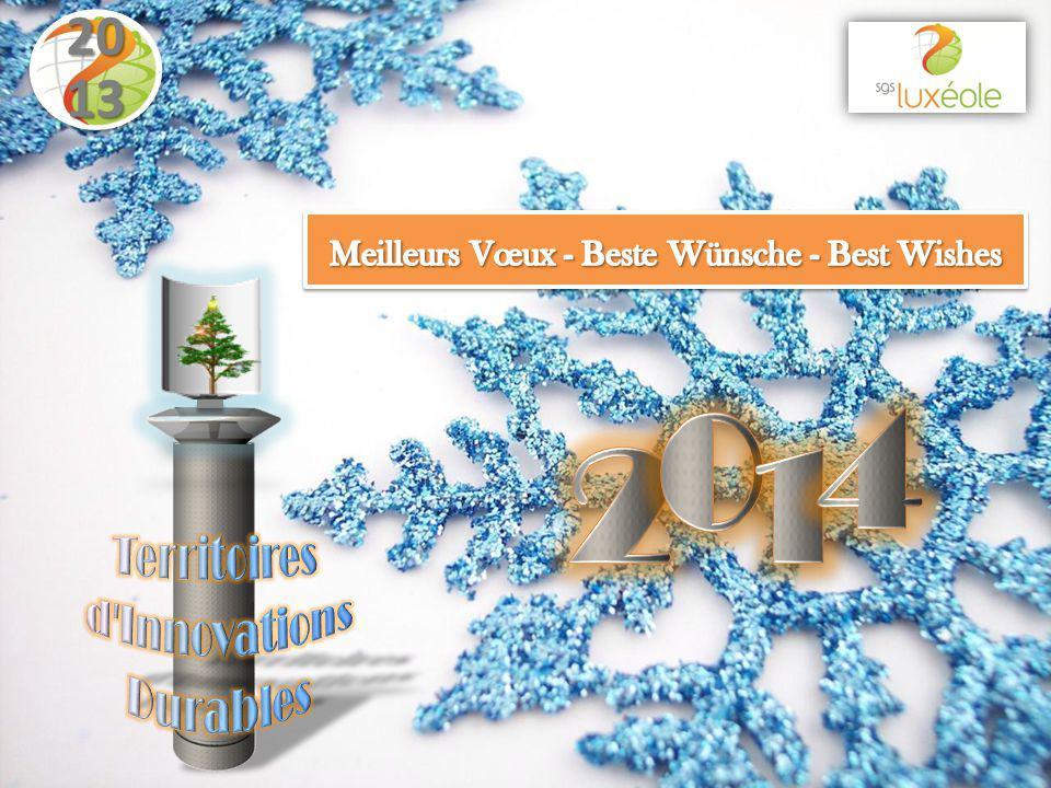 Dec 3 rd – Chamber of Commerce Seine & Marne Winner in DIGITall 77 contest www.sgs-luxeole.fr