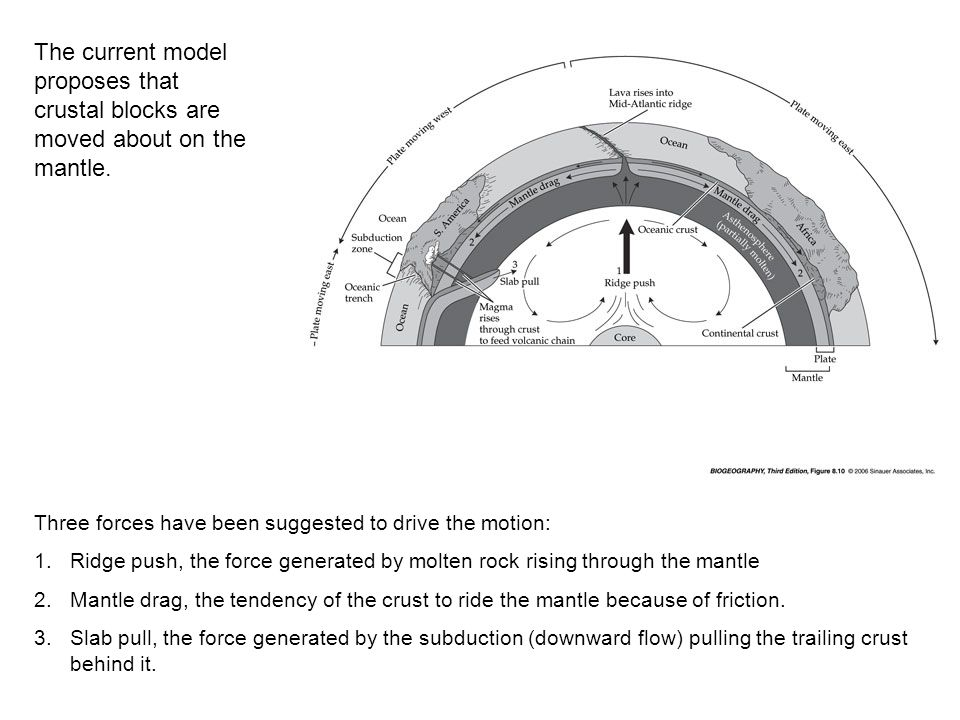 The current model proposes that crustal blocks are moved about on the mantle.