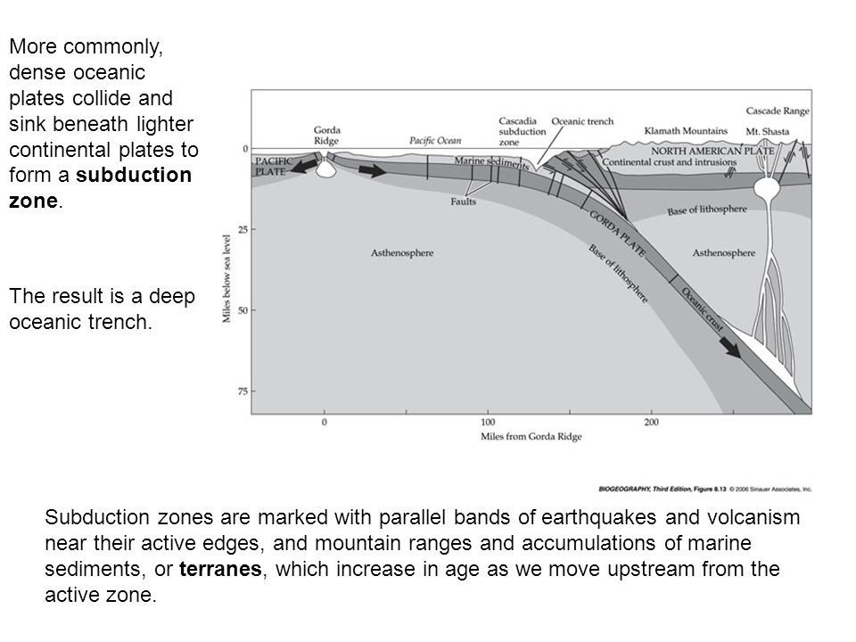 More commonly, dense oceanic plates collide and sink beneath lighter continental plates to form a subduction zone.