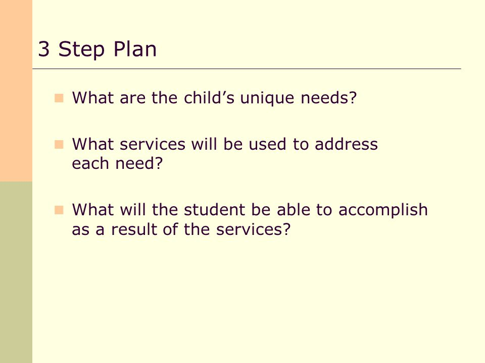 What are the childs unique needs. What services will be used to address each need.