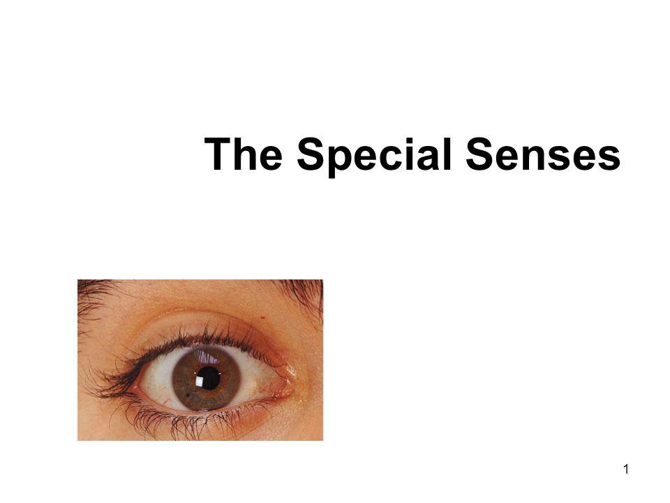 1 The Special Senses
